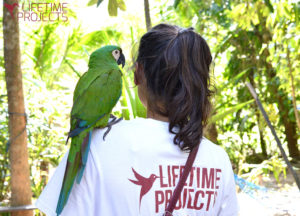 "Photo illustrant la mission ""Refuge pour animaux sauvages au Guatemala"", avec Lifetime Projects"