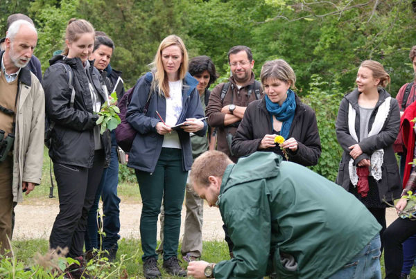 "Photo illustrant la formation ""protection de l'environnement dans une ferme bio en Angleterre"", avec Lifetime Projects"