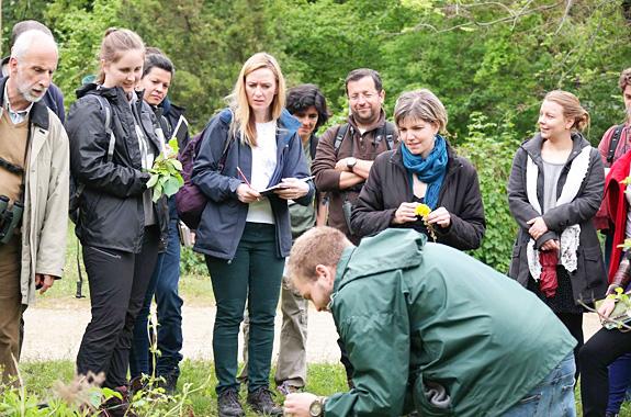 """LifeTime Projects : illustration de la """"Formation à la protection de l'environnement dans une ferme bio en Angleterre"""""""