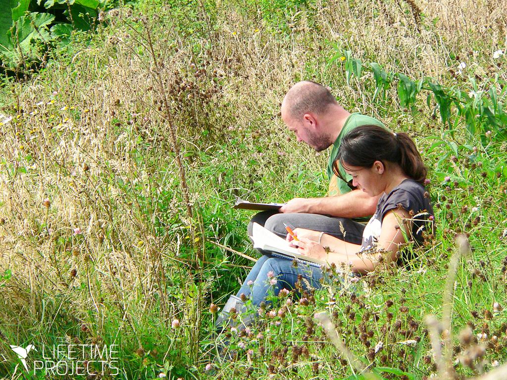 Photo illustrant le bilan 2018 des missions écologiques en Angleterre, avec Lifetime Projects