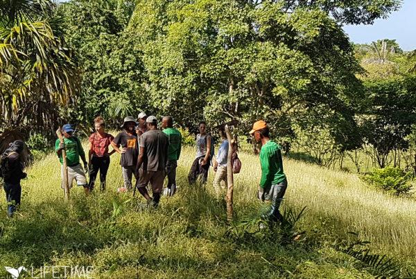 Photo de la mission d'action environnementale avec Lifetime Projects