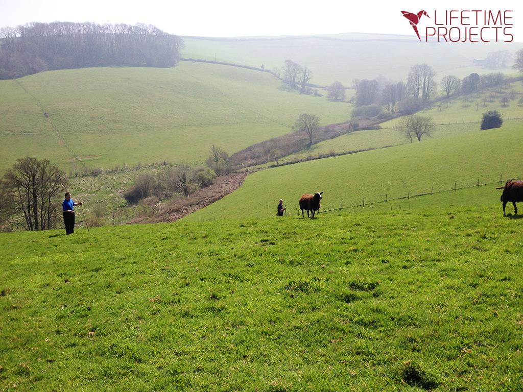 Photo de la ferme bio en Angleterre, avec LifeTime Projects