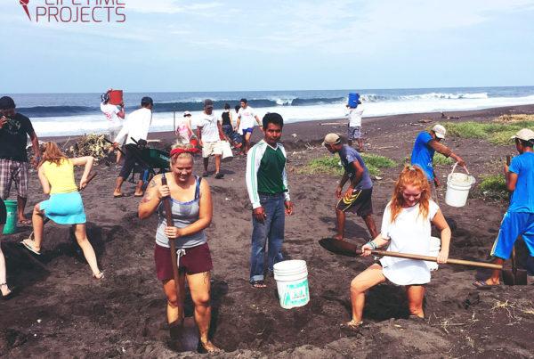 Photo du programme de sauvetage d'animaux sauvages au Guatemala, avec LifeTime Projects